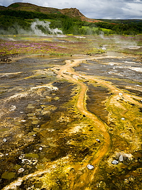 Steam rising from hot springs near a Geysir in an area of geothermal activity, Iceland