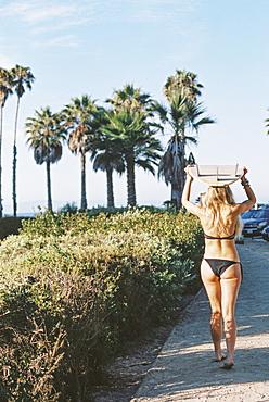 A woman in a black bikini walking down a path carrying a surfboar on her head.