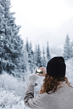 A woman using a smart phone, photographing pine forests in snow,