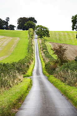 The view up Britwell Hill, a long straight rising road through farmland