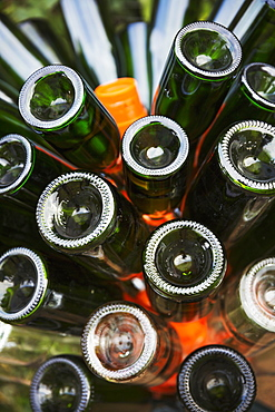 Glass bottles in a bin, green bottles.