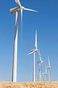 Tall wind turbines in open country farmland in Washington, United States of America
