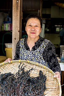 Japanese woman standing in a textile plant dye workshop, holding basket with plant matter, smiling at camera, Kyushu, Japan