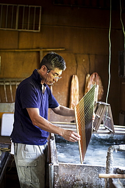 Japanese man in a workshop holding a wooden frame of dried pulp over a basin of water, making traditional Washi paper, Kyushu, Japan