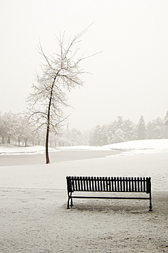 Empty Park Bench in Snow, Salt Lake City, Utah, United States of America