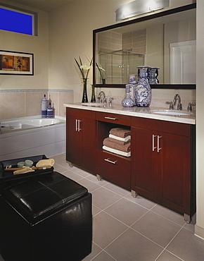 Bathroom, United States of America