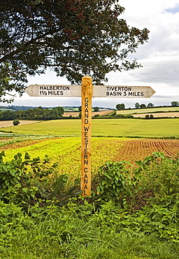 Wooden Signpost in Countryside, Halberton, Devon, England, UK