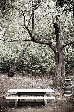Empty Picnic Area, Los Angeles, California, United States of America