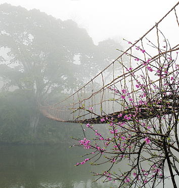 Footbridge Suspended Over a Foggy River, Lao Cai, Vietnam