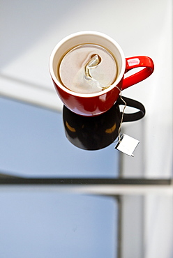 Tea steeping in mug on glass table, Rijswijk, Netherlands, Netherlands