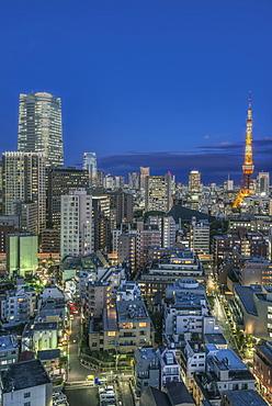 Tokyo cityscape lit up at night, Tokyo, Japan