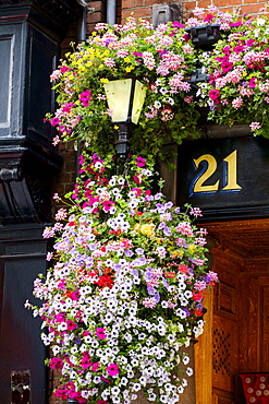 Flowers hanging near number 21 outdoors, Dublin, Leinster, Ireland