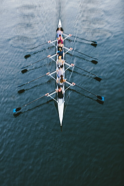 Female crew racers rowing, high angle view, Lake Union, Seattle, Washington, United States of America
