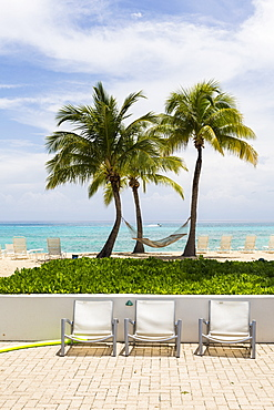 Pool chairs and palm trees on a tropical island beach, Grand Cayman, Cayman Islands