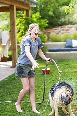 A teenage girl washing her dog on green lawn