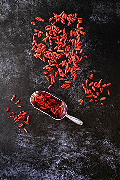 High angle close up of Goji berries and metal scoop on black background