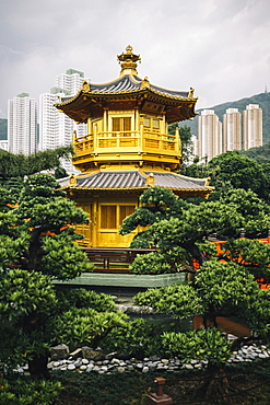 Exterior view of golden temple surrounded by trees, skyscrapers in the background, China
