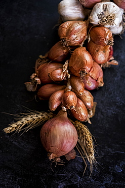 High angle close up of string of onions and garlic on black background, United Kingdom