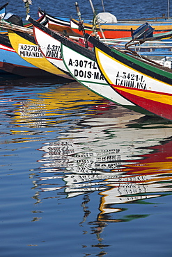 Traditional moliceiros fishing boats with high prows, painted in vivid colours, moored offshore at Torreira, Ria de Aveiro Lagoon, Portugal