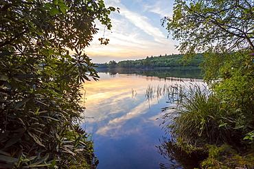 Sunset at Virgina Water lake, Surrey, England, United Kingdom, Europe