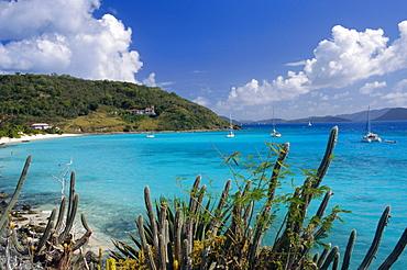 Jost Van Dyke island, British Virgin Islands, Caribbean, West Indies, Central America