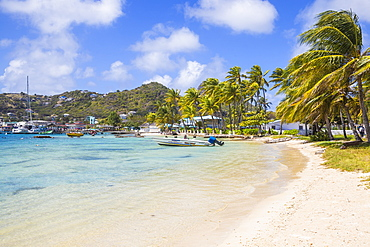 Clifton Harbour, Union Island, The Grenadines, St. Vincent and The Grenadines, West Indies, Caribbean, Central America