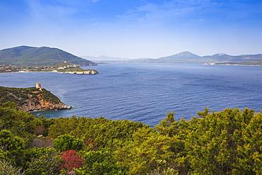 View towards Bollo Tower, Capo Caccia, Porto Conte National Park, Alghero, Sardinia, Italy, Mediterranean, Europe