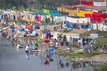 Laundry drying on banks of Gomti River, Lucknow, Uttar Pradesh, India, Asia