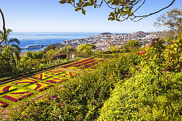 Botanical Gardens, Monte, Funchal, Madeira, Portugal, Atlantic, Europe