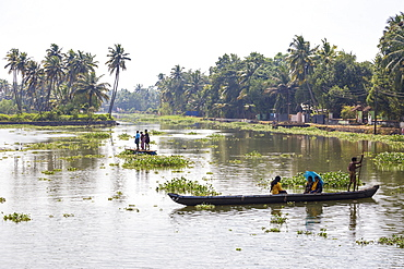 People crossing river in dug out canoe, Backwaters, Kollam, Kerala, India, Asia