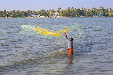 Fishermen throwing fishing net, Fort Kochi, Cochin (Kochi), Kerala, India, Asia