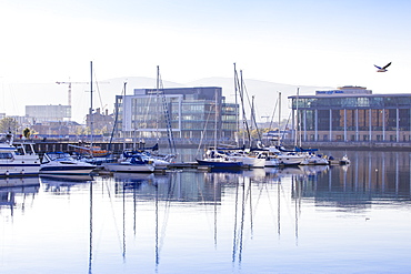 Belfast Harbour Marina, Belfast, Ulster, Northern Ireland, United Kingdom, Europe