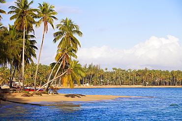 Beach at Las Terrenas, Samana Peninsula, Dominican Republic, West Indies, Caribbean, Central America