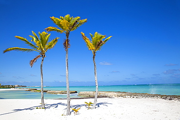 Beach at Also del Mar resort, Punta Cana, Dominican Republic, West Indies, Caribbean, Central America