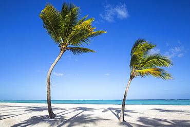 Juanillo Beach, Cap Cana, Punta Cana, Dominican Republic, West Indies, Caribbean, Central America
