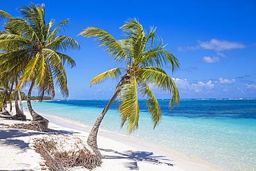 Playa Cabeza de Toro, Punta Cana, Dominican Republic, West Indies, Caribbean, Central America