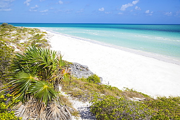 Sand dunes at Playa Pilar, Cayo Guillemo, Jardines del Rey, Ciego de Avila Province, Cuba, West Indies, Caribbean, Central America