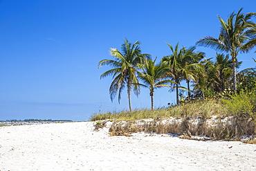 Cabbage Beach, Paradise Island, Nassau, Bahamas, West Indies, Caribbean, Central America