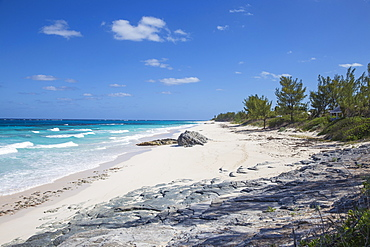 Beach near Nippers Bar, Great Guana Cay, Abaco Islands, Bahamas, West Indies, Central America