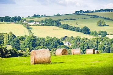 Hay bale landscape, Northumberland National Park, near Hexham, Northumberland, England, United Kingdom, Europe
