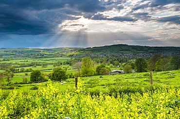Rape in the Sudely Valley, Winchcombe, The Cotswolds, Gloucestershire, England, United Kingdom, Europe