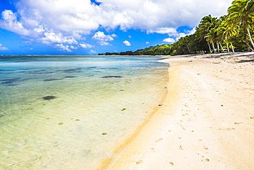 Tropical Beach in Muri area of Rarotonga, Cook Islands, South Pacific, Pacific