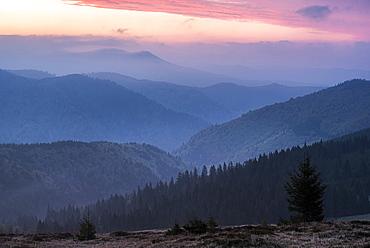 Carpathian Mountains landscape during a misty sunrise, Ranca, Oltenia Region, Romania, Europe