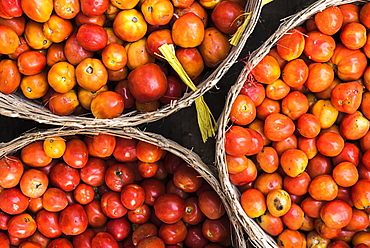 Tomatoes at Hpa An Morning Market, Kayin State (Karen State), Myanmar (Burma), Asia