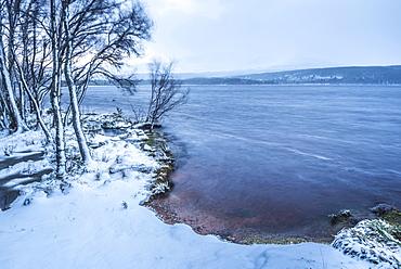 Loch Morlich in snow in winter, Glenmore, Cairngorms National Park, Scotland, United Kingdom, Europe