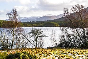 Loch an Eilein with Cairngorm Mountain behind, Aviemore, Cairngorms National Park, Scotland, United Kingdom, Europe