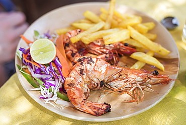 Giant king prawns, Galgibag Beach, South Goa, India, Asia