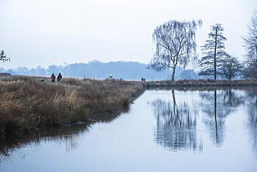 Pen Ponds, the lakes in Richmond Park, Richmond, London, England, United Kingdom, Europe