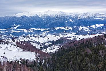 Carpathian Mountains snowy winter landscape, Pestera, Bran, Transylvania, Romania, Europe