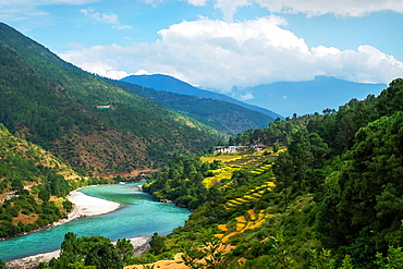Punakha landscape edged by Pho Chhu River and the Himalayas, Punakha, Bhutan, Asia